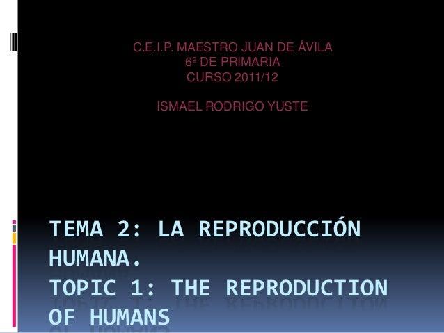C.E.I.P. MAESTRO JUAN DE ÁVILA                6º DE PRIMARIA                CURSO 2011/12         ISMAEL RODRIGO YUSTETEMA...