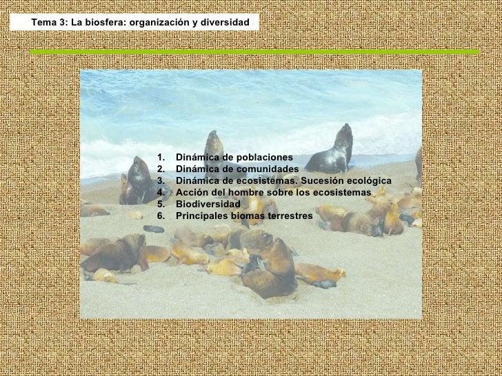 Tema 3: La biosfera: organización y diversidad <ul><li>Dinámica de poblaciones </li></ul><ul><li>Dinámica de comunidades <...