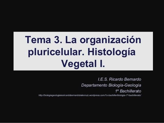 Tema 3. La organización pluricelular. Histología Vegetal I. I.E.S. Ricardo Bernardo Departamento Biología-Geología 1º Bach...