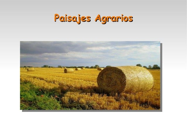 Paisajes Agrarios