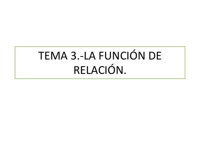 TEMA 3.-LA FUNCIÓN DE RELACIÓN.