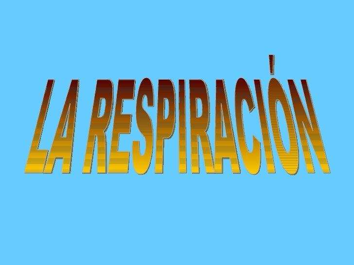 LA RESPIRACIÓN