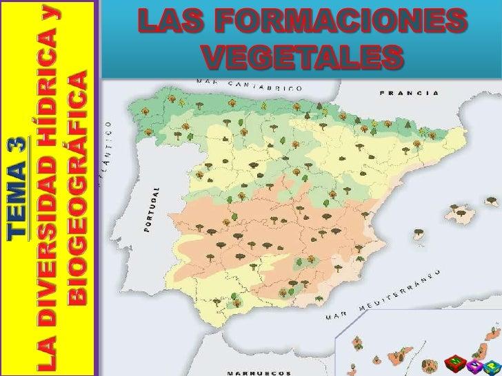 LAS FORMACIONES VEGETALES<br />TEMA 3<br />LA DIVERSIDAD HÍDRICA y BIOGEOGRÁFICA<br />