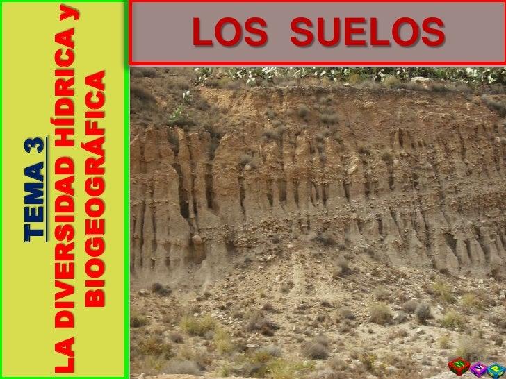 TEMA 3<br />LA DIVERSIDAD HÍDRICA y BIOGEOGRÁFICA<br />LOS  SUELOS<br />