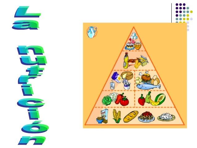 Tema 3 la_nutricion_ernesto