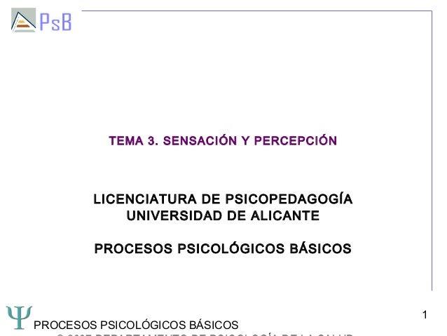 TEMA 3. SENSACIÓN Y PERCEPCIÓN        LICENCIATURA DE PSICOPEDAGOGÍA            UNIVERSIDAD DE ALICANTE        PROCESOS PS...