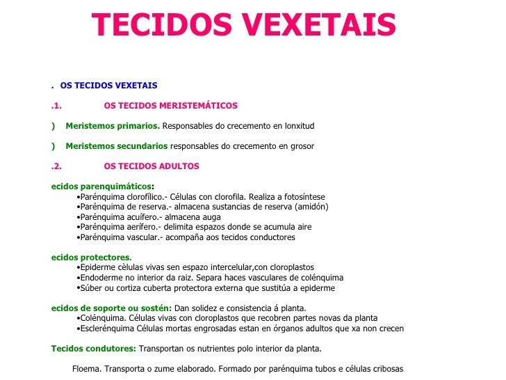 TECIDOS VEXETAIS <ul><li>1.   OS TECIDOS VEXETAIS </li></ul><ul><li>1.1.   OS TECIDOS MERISTEMÁTICO...