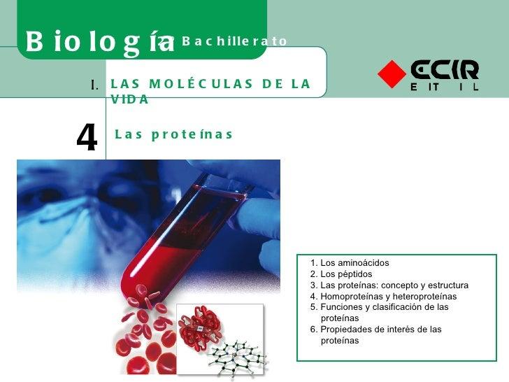 LAS MOLÉCULAS DE LA VIDA I. 4 Las proteínas Biología 2º Bachillerato 1. Los aminoácidos 2. Los péptidos 3. Las proteínas: ...