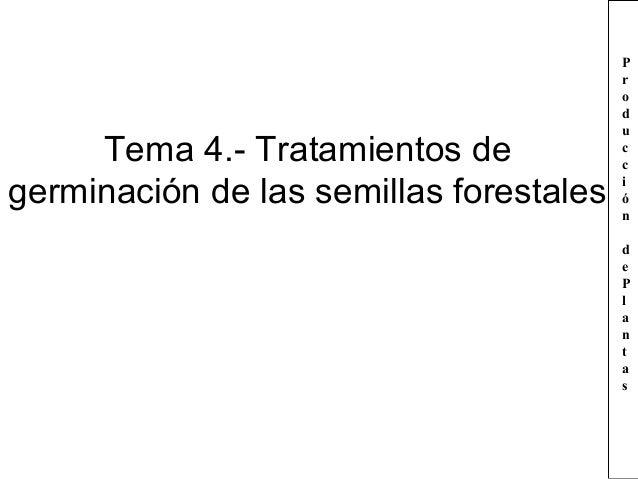 Tema 4.- Tratamientos de germinación de las semillas forestales  P r o d u c c i ó n d e P l a n t a s