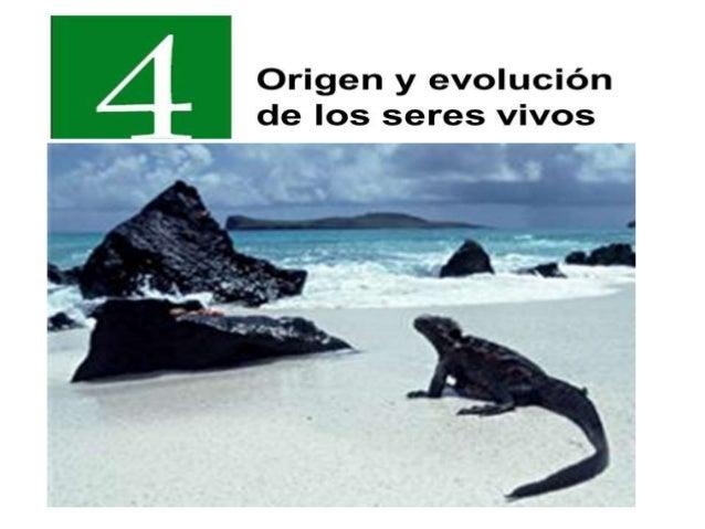1.-EL ORIGEN DE LA VIDA: HIPÓTESIS Se han propuesto diferentes hipótesis para explicar el origen de la vida Generación esp...