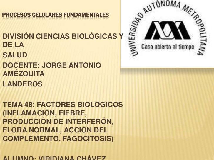 PROCESOS CELULARES FUNDAMENTALESDIVISIÓN CIENCIAS BIOLÓGICAS YDE LASALUDDOCENTE: JORGE ANTONIOAMÉZQUITALANDEROSTEMA 48: FA...