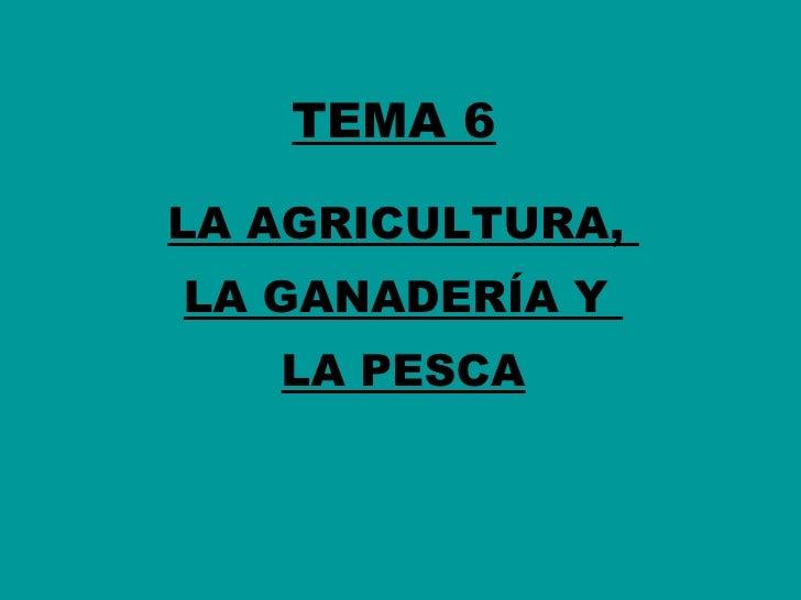 TEMA 6 LA AGRICULTURA,  LA GANADERÍA Y  LA PESCA
