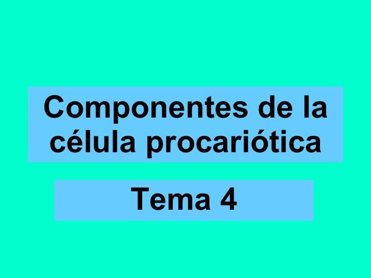 Componentes de la célula procariótica Tema 4