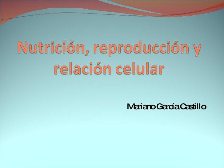 Mariano García Castillo