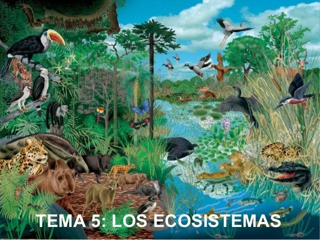 TEMA 5: LOS ECOSISTEMAS