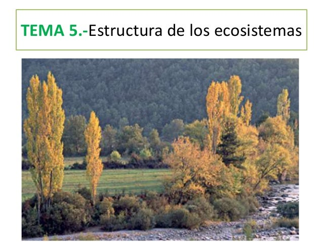 TEMA 5.-Estructura de los ecosistemas