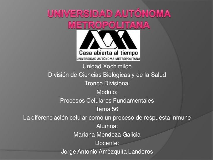 Unidad Xochimilco          División de Ciencias Biológicas y de la Salud                        Tronco Divisional         ...