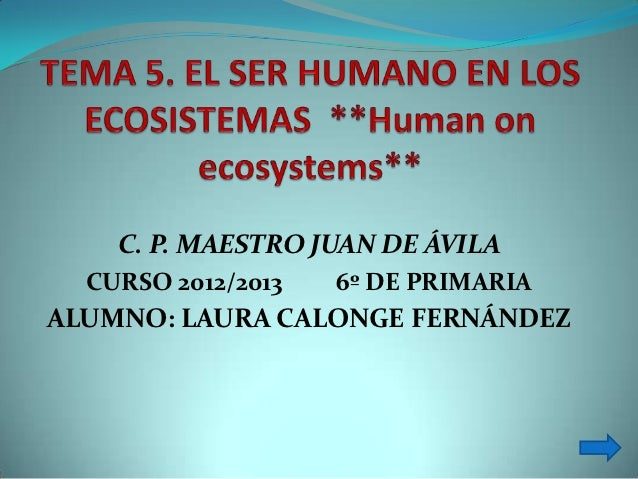 C. P. MAESTRO JUAN DE ÁVILA  CURSO 2012/2013   6º DE PRIMARIAALUMNO: LAURA CALONGE FERNÁNDEZ