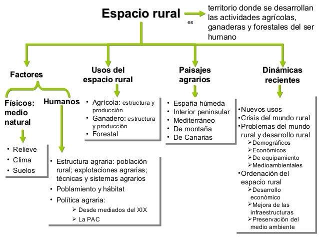 Tema 5: Espacio rural y Epacio agrario