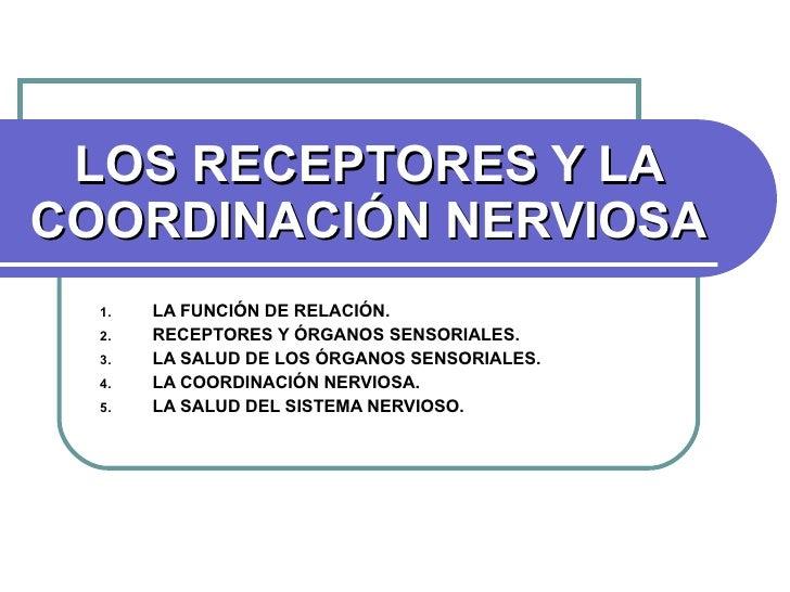 LOS RECEPTORES Y LA COORDINACIÓN NERVIOSA <ul><li>LA FUNCIÓN DE RELACIÓN. </li></ul><ul><li>RECEPTORES Y ÓRGANOS SENSORIAL...