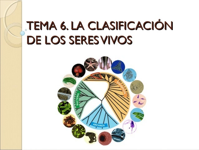 TEMA 6. LA CLASIFICACIÓNDE LOS SERES VIVOS