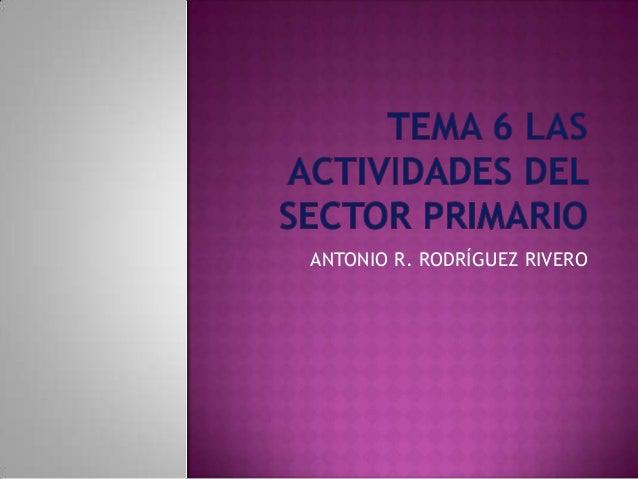 Tema 6. las activ sector primario.docx