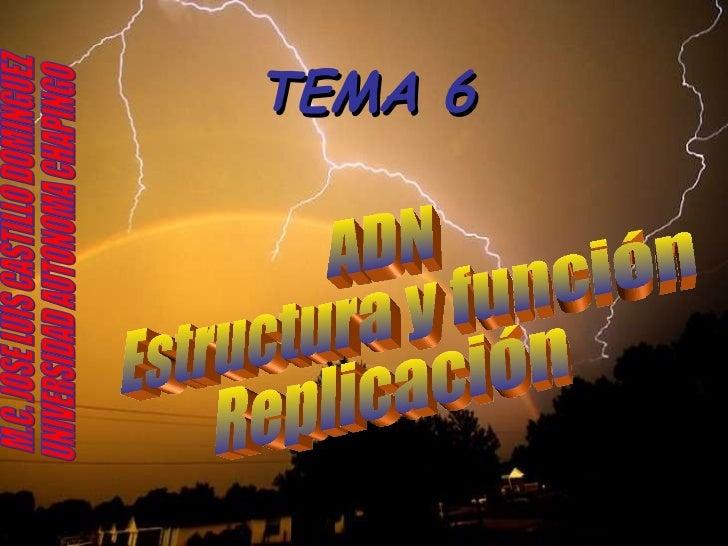 TEMA 6 ADN Estructura y función Replicación M.C. JOSE LUIS CASTILLO DOMINGUEZ UNIVERSIDAD AUTONOMA CHAPINGO