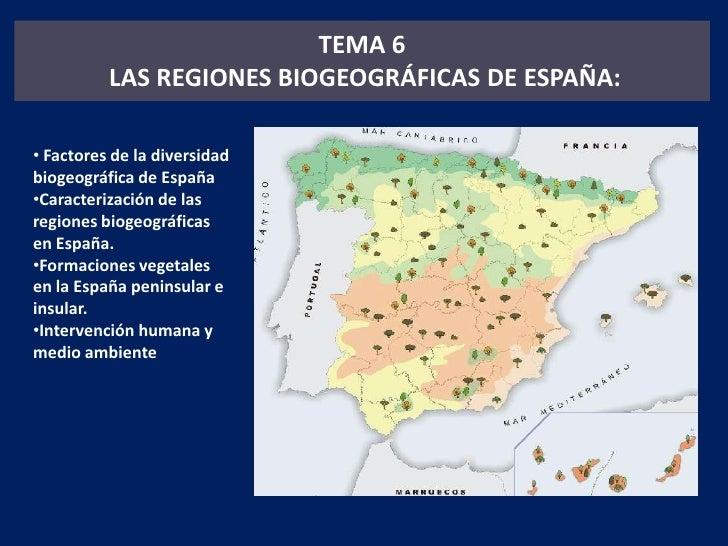 TEMA 6<br /> LAS REGIONES BIOGEOGRÁFICAS DE ESPAÑA:<br /><ul><li> Factores de la diversidad biogeográfica de España