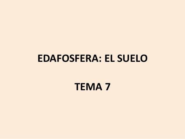 EDAFOSFERA: EL SUELO TEMA 7