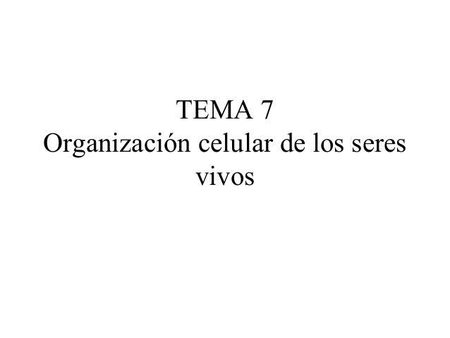 TEMA 7 Organización celular de los seres vivos