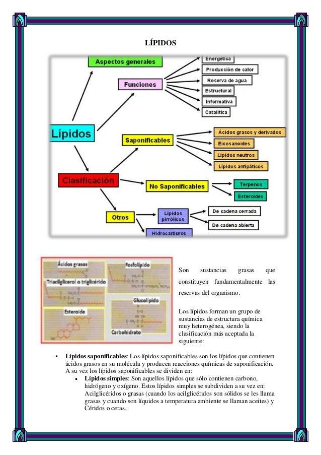 LÍPIDOS Son sustancias grasas que constituyen fundamentalmente las reservas del organismo. Los lípidos forman un grupo de ...