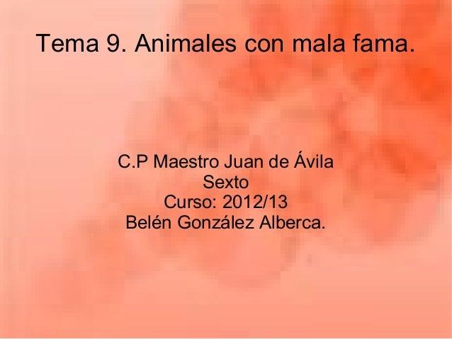Tema 9. Animales con mala fama.C.P Maestro Juan de ÁvilaSextoCurso: 2012/13Belén González Alberca.
