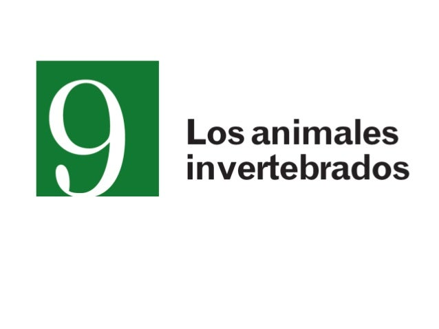 CLASIFICACIÓN DE LOS INVERTEBRADOS Poríferos   Celentéreos         Platémintos      NemátodosAnélidos     Moluscos        ...