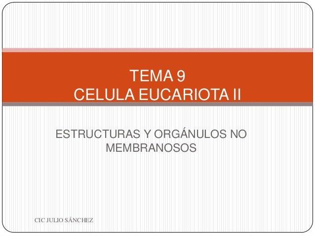 TEMA 9 CELULA EUCARIOTA II ESTRUCTURAS Y ORGÁNULOS NO MEMBRANOSOS  CIC JULIO SÁNCHEZ