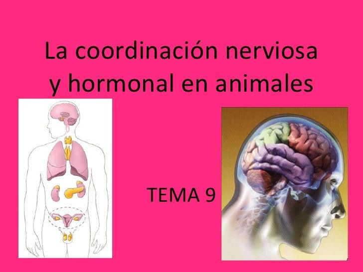 La coordinación nerviosa y hormonal en animales TEMA 9