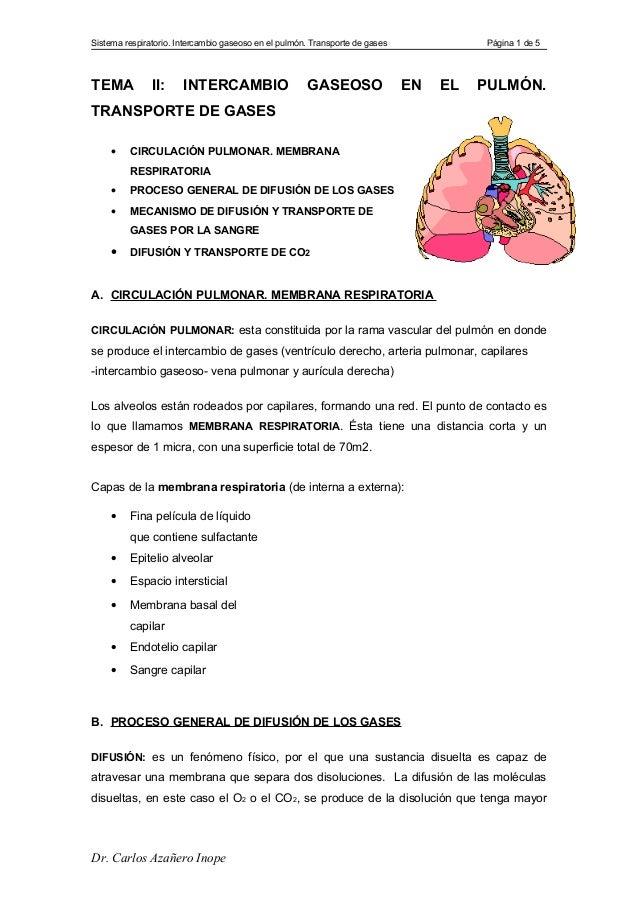 Sistema respiratorio. Intercambio gaseoso en el pulmón. Transporte de gases             Página 1 de 5TEMA           II:   ...