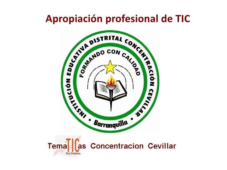 Apropiación profesional de TIC<br />