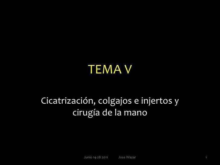 TEMA V<br />Cicatrización, colgajos e injertos y cirugía de la mano<br />1<br />Junio 14-28 2011             Jose Wazar<br />