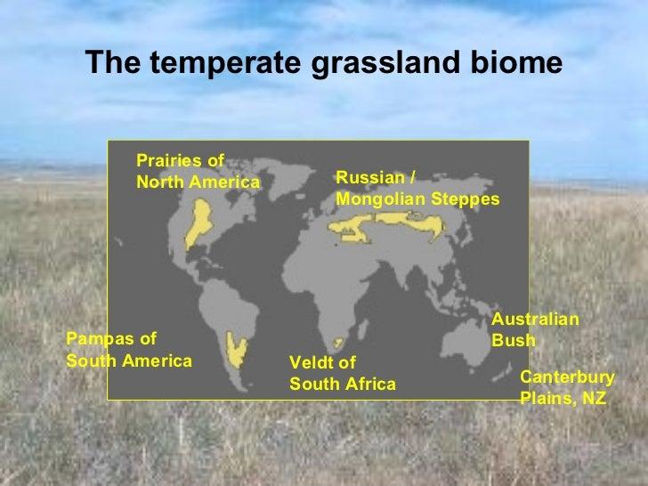 Major australian biomes