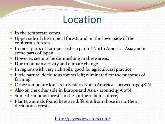 a description of deciduous forests