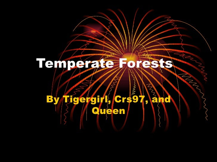 Temperate Forests By Tigergirl, Crs97, and Queen