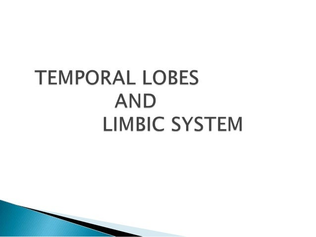 Temporal lobe and limbic system