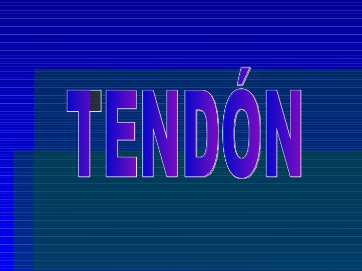 TENDÓN