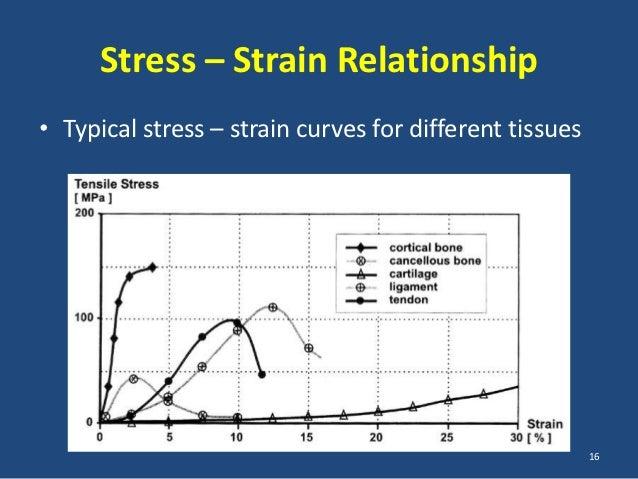 the stress strain relationship for skin