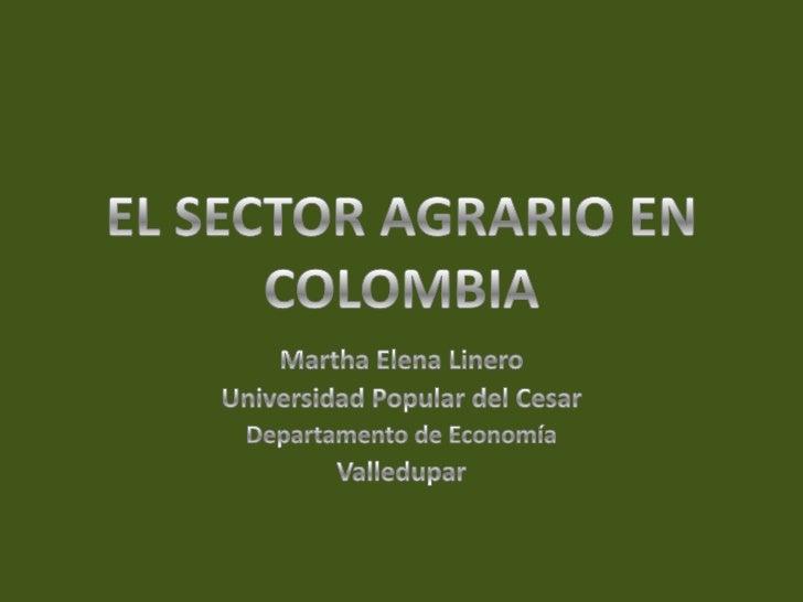 EL SECTOR AGRARIO EN COLOMBIA<br />Martha Elena Linero<br />Universidad Popular del Cesar<br />Departamento de Economía<br...