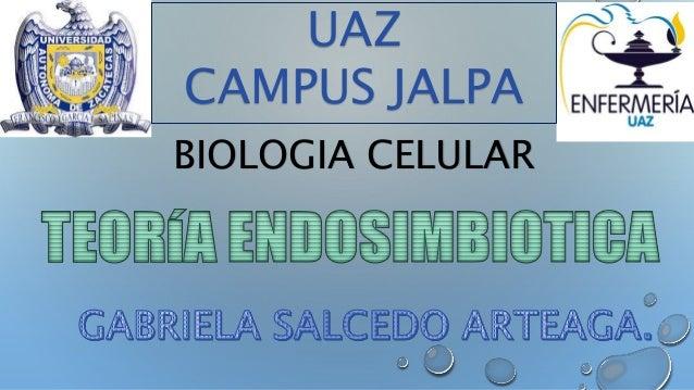 UAZ  CAMPUS JALPA  BIOLOGIA CELULAR