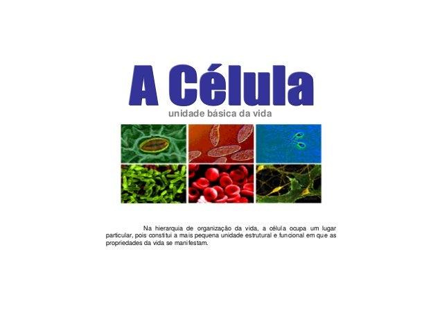 unidade básica da vidaNa hierarquia de organização da vida, a célula ocupa um lugarparticular, pois constitui a mais peque...