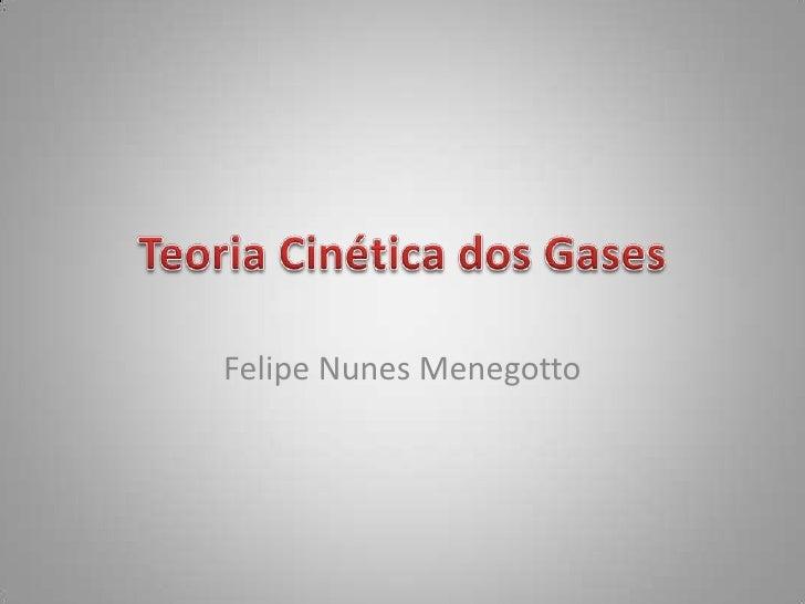 Felipe Nunes Menegotto