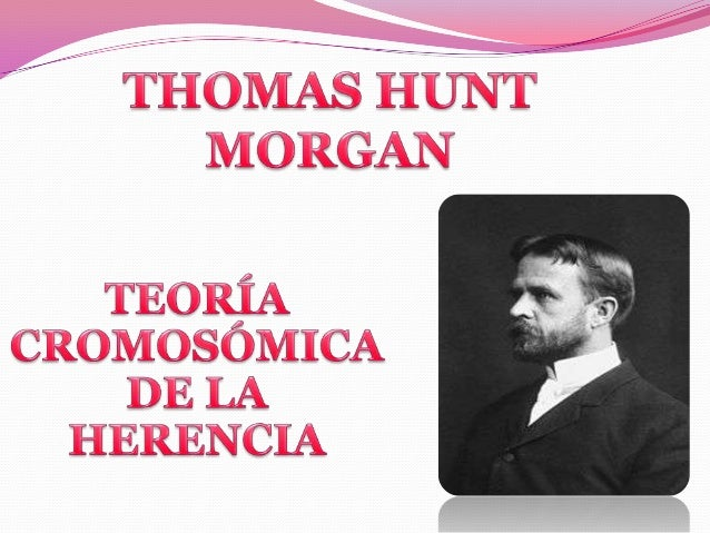 Teoria de thomas morgan