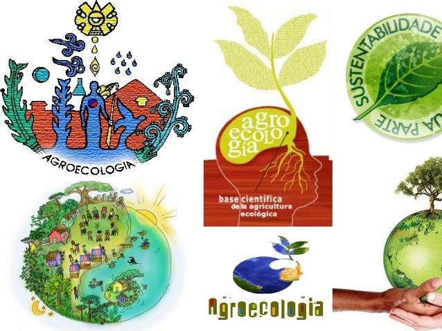 Teoria e métodos em Agroecologia